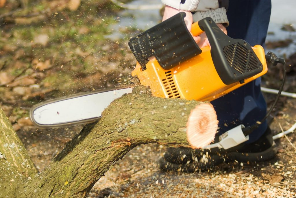 Norwalk Tree Service Pros - 13